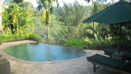 The Royal Pita Maha: piscina della camera