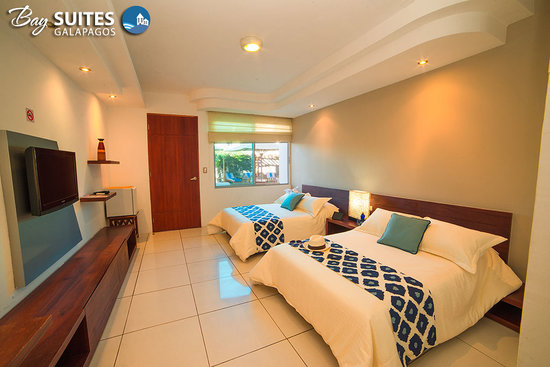 Bay Suites : Tiled floors and warm-colored wooden accents create a comfortable and beautiful atmosphere in th
