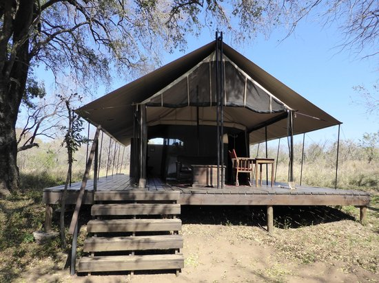 Honeyguide Khoka Moya & Mantobeni Camps: Our tent
