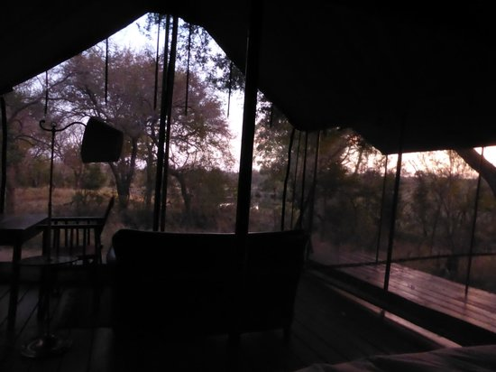 Honeyguide Tented Safari Camps: Morning view from inside the tent