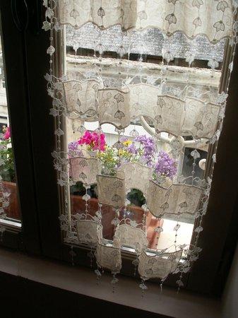 Dodo et Tartines: Uen fenêtre