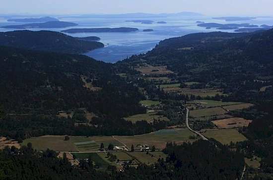 Western Splendour Tours & Charters : Top of Mt Maxwell Salt Spring 2013