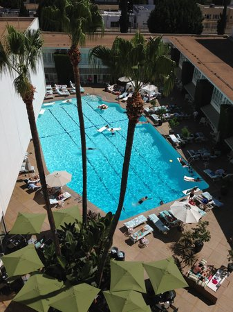 The Beverly Hilton: Poolside View Room #429