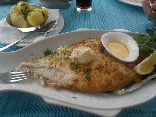 Gastmahl des Meeres: Scholle Müllerin