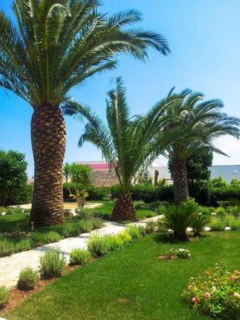 Agriturismo Masseria Calongo: Il giardino