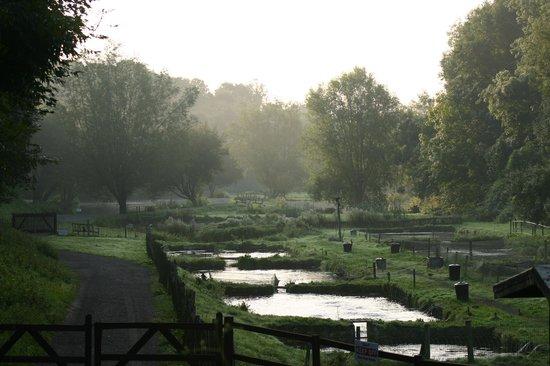 Chalk Springs Trout Fishery: A misty September morning