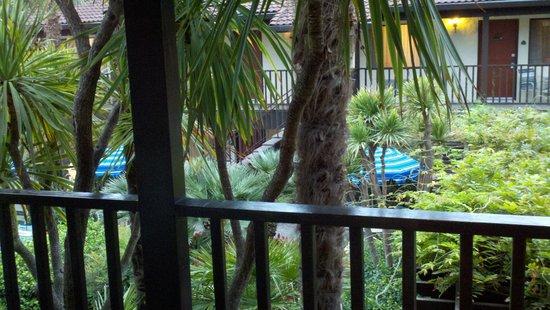 Roman Spa Hot Springs Resort: Courtyard view from front door of room