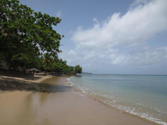 أبارتمنت إسبوار: The beach
