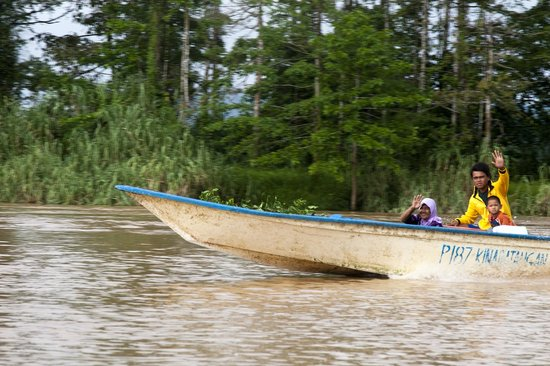 Uncle Tan Wildlife Camp: Explore your surroundings by boat