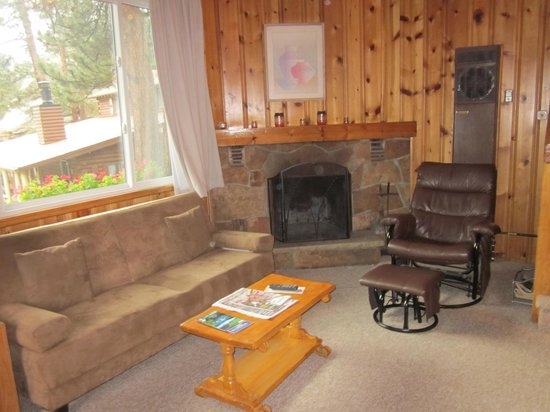 Blackhawk Lodges: Wood burning fireplace