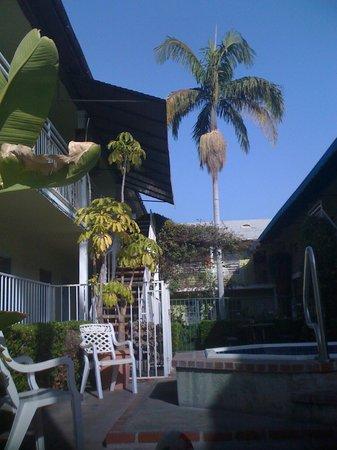 Coral Sands Motel: relax en la piscina al lade de el jacuzzi