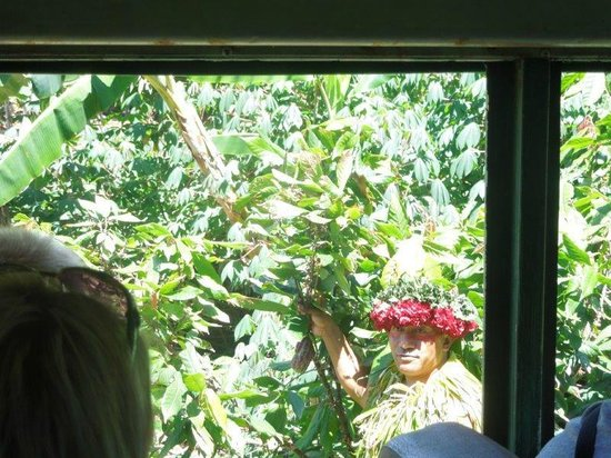 Tropical Farms Macadamia Nut Farm and Farm Tour: Great tour guide!