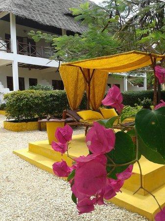 Bahati Villa: l'area relax nel giardino con scorcio delle camere al piano superiore