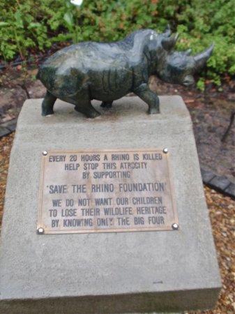 Lavender Farm Guest House Franschhoek: Rhino Awareness