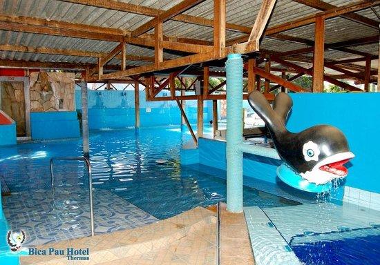 Bica Pau Hotel Thermas Bar Aquático