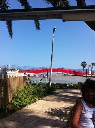 Aparthotel Orquidea Playa: udsigten fra hotellets ude område :)