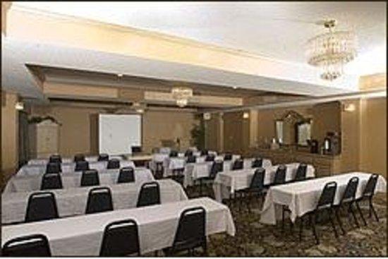 BEST WESTERN Aspen Hotel : Meeting Space