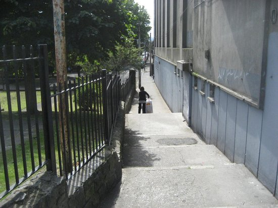 Blessington Street Park (The Basin) : Steps down to park