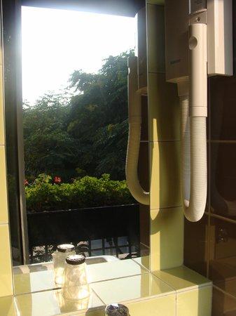 Libertel Austerlitz Jardin des Plantes: Vista desde el bano (reflejado en el espejo)