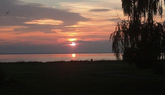 Black Walnut Point Inn: Willow Tree Sunset