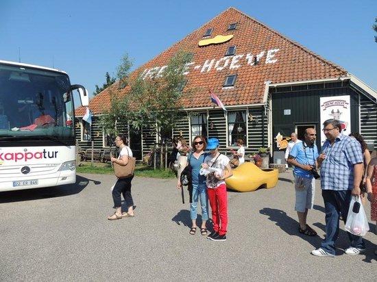 Irene Hoeve Clogs and Cheese Shop: ırene hoove