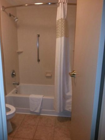 Hampton Inn Detroit / Madison Heights / South Troy : Shower