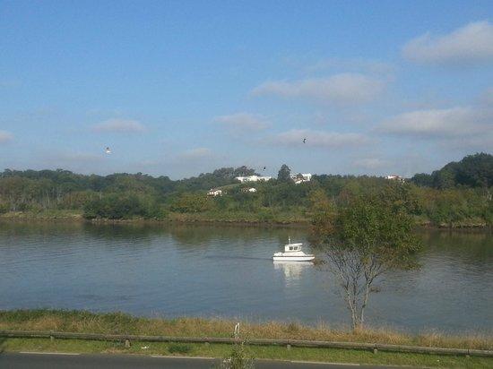 Adonis Bayonne Hotel : Vue fleuve