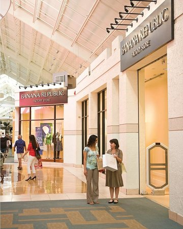 Sawgrass Mills is located in Sunrise, Florida and offers stores - Scroll down for Sawgrass Mills outlet shopping information: store list, locations, outlet mall hours, contact and address.5/5(7).