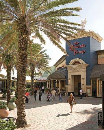 Best Restaurants In Sunrise Boulevard