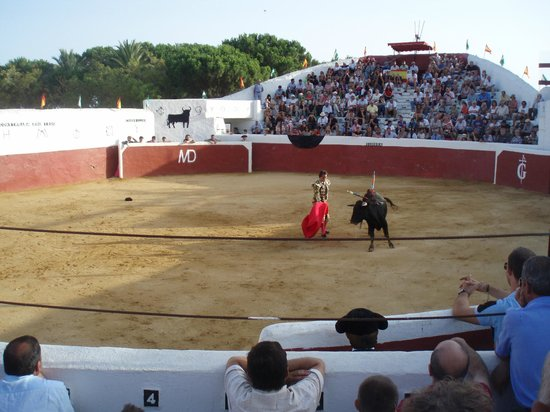Mijas Plaza de Toros: The bullfight