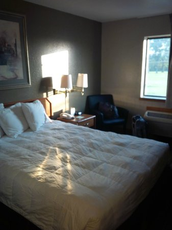 Super 8 Louisville Airport: Bed was comfy, sheets were clean