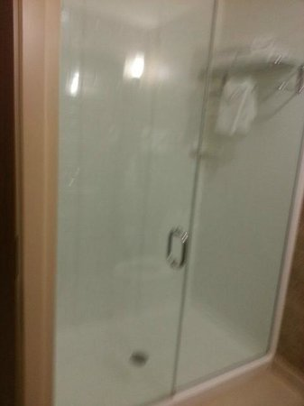 Holiday Inn Detroit Metro Airport: Shower