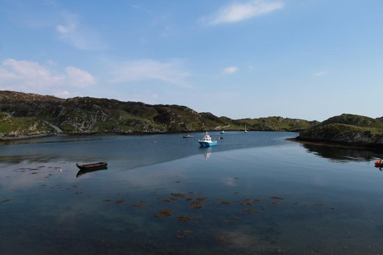 Inishbofin House Hotel & Marine Spa : View from my room