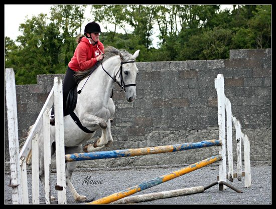Cooper's Hill Equine : Cailin Ban