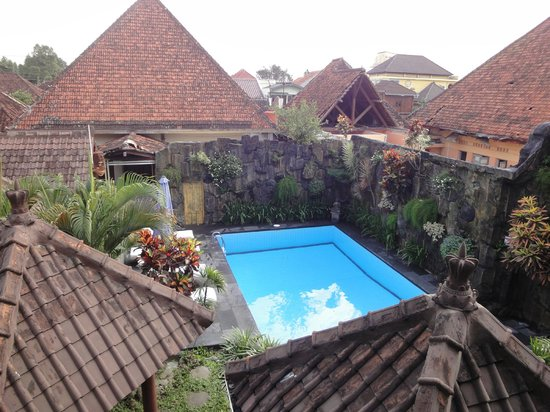 Prambanan Guesthouse: Piscine