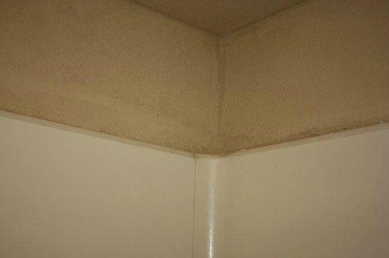 Econo Lodge Homewood - Birmingham: Badezimmer