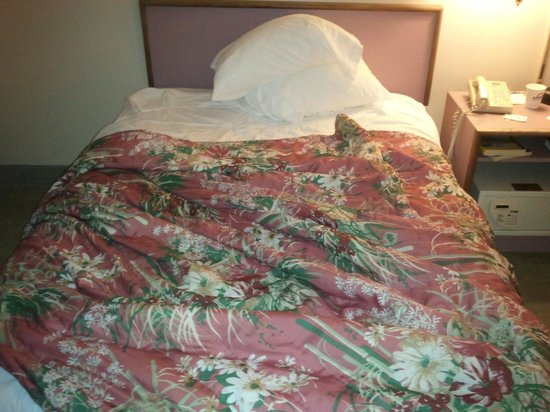 Days Inn Shrewsbury Worcester: more pink decor bed double size