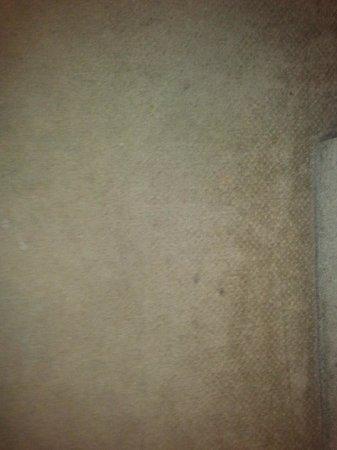 Days Inn Shrewsbury Worcester: dirty carpet