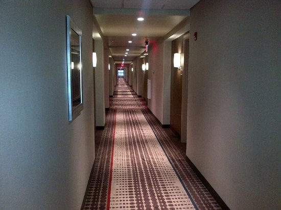 Residence Inn Boston Logan Airport/Chelsea: hallway