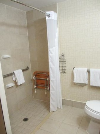 salle de bain norme handicapé - Photo de Holiday Inn Manhattan 6th ...