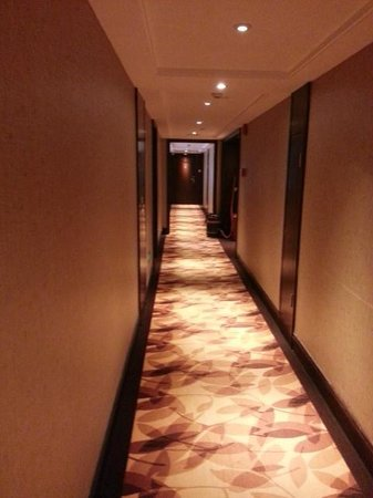 Leeden Hotel: hall way to room