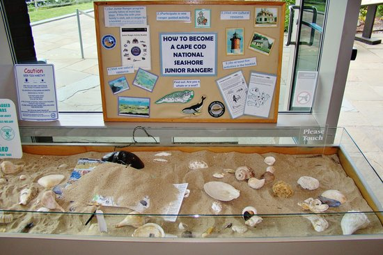 Salt Pond Visitor Center: A hand-on display in the lobby.