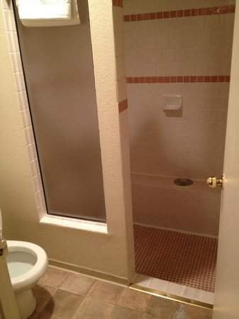 Murphey's Motel: Huge shower!!