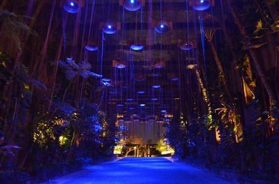 เดอะ เซนต์รีจีส บาหลี รีสอร์ท: Entrance at night