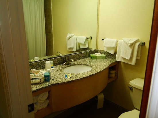 Camelot Motel: Sink area in bath, includes hair dryer