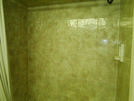 Camelot Motel: Bath/Shower