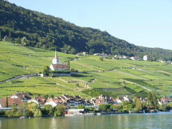 Biel Seerundfahrt : View from Lake Biel of Ligerz