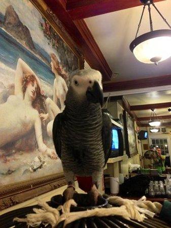 Pioneer Inn Grill and Bar: La star du restaurant