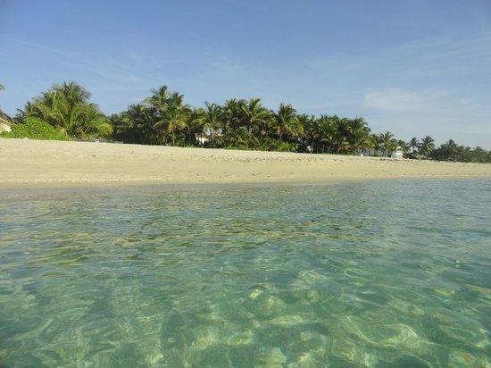 Trump International Beach Resort: Golden Beach near to Trump Internacional Resort