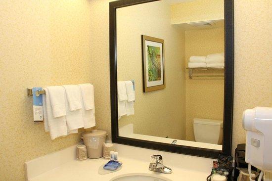 Fairfield Inn & Suites Ukiah Mendocino County: Bathroom